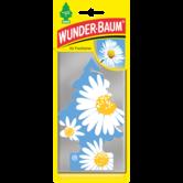 WUNDER-BAUM - DAISY FLOWER